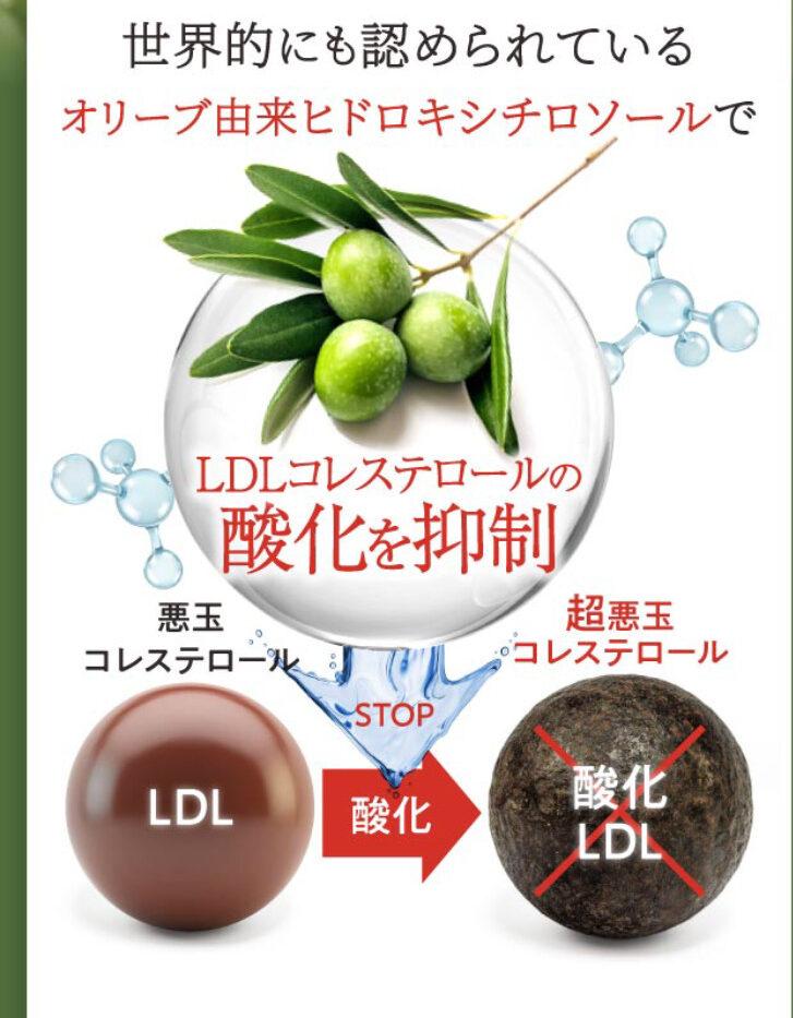 ヒドロキシチロソール(オリーブ葉抽出成分)の働きイメージ写真